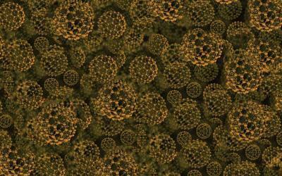 Nanobio-Hybrid Organisms Use C02 To Produce Plastics & Fuels